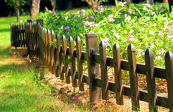 The hedge in the park. Flower gardening, landscape, wooden fence, bright-coloured flower, beautiful environment Stock Images