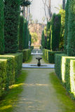 Hedge path Royalty Free Stock Images