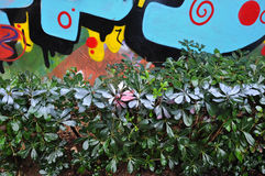 Hedge with spray painted leaves Stock Image