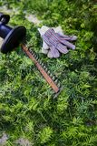 Hedge trimmer, gloves and green bush clippings Royalty Free Stock Photography