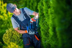 Hedge Trimmer Works Stock Photos