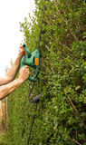 Hedge trimming Stock Images