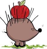 hedgehog яблока Стоковая Фотография RF
