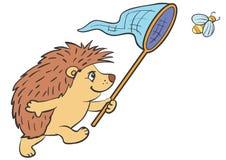 Hedgehog ilustração do vetor