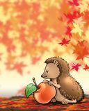 HEDGEHOG. Little hedgehog with apple (autumn Royalty Free Stock Images