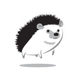 hedgehog Stock Foto