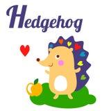 hedgehog Immagini Stock Libere da Diritti