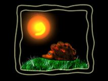 Hedgehog. On the grass at black background with sun Royalty Free Stock Image