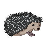 Hedgehog.Animals single icon in cartoon style rater,bitmap symbol stock illustration web. Hedgehog.Animals single icon in cartoon style rater,bitmap symbol Royalty Free Stock Photo