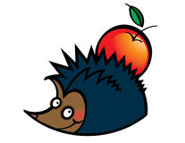 Hedgehog with Apple Stock Photography