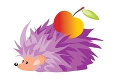 Hedgehog and apple Stock Photo