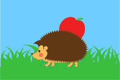Hedgehog with apple on his back Royalty Free Stock Images