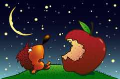 Hedgehog and apple. Hedgehog sitting on the lawn at night before the big apple Royalty Free Illustration