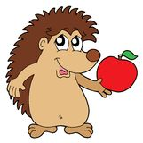 Hedgehog with apple vector illustration Stock Images