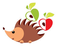 Hedgehog with apples -  illustration Stock Photography