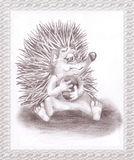 The hedgehog with the ball Royalty Free Stock Image