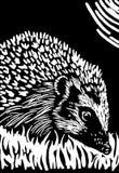 Hedgehog. Black and white hedgehog linocut print illustration Royalty Free Stock Photos