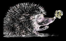 Hedgehog and butterfly. Drawn in chalk on a blackboard Stock Photo