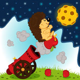 Hedgehog cannonball flies into space Royalty Free Stock Images