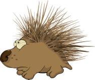 Hedgehog. Cartoon Royalty Free Stock Photos