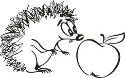 Hedgehog cartoon Royalty Free Stock Photo