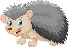 Hedgehog cartoon was looking to the side Stock Photography