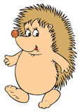 Hedgehog Character Cartoon Royalty Free Stock Image