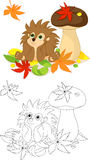 Hedgehog coloring page Royalty Free Stock Image