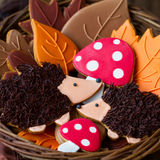 Hedgehog cookies Stock Photos