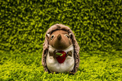 Hedgehog doll Royalty Free Stock Image
