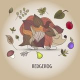 Hedgehog with fruit and leaves Stock Photography