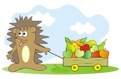 Hedgehog and fruit Stock Photo
