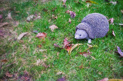 Hedgehog on the Grass. A decorative hedgehog on the autumn grass Royalty Free Stock Photo