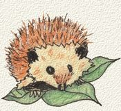 A hedgehog, hand painted in watercolor and ink. Royalty Free Stock Photo