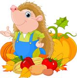 Hedgehog with harvest Royalty Free Stock Photo