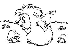 Hedgehog harvest coloring pages Royalty Free Stock Photos