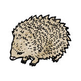 hedgehog illustration Royalty Free Stock Photo