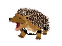 Hedgehog. Illustration of a small hedgehog - vector illustration vector illustration