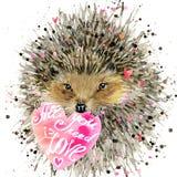 Hedgehog illustration with valentines heart, Stock Images