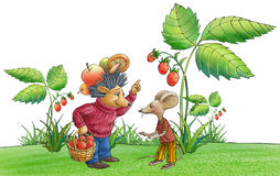 The hedgehog  lazy little mouse. The hedgehog holds a basket with berries. Lazy little mouse asks to give a berry Stock Photos