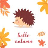Hedgehog with leaves. Illustration of a smiling hedgehog isolated on the background of the leaves and the inscription hello fall, cute cartoon character, funny stock illustration