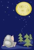 Hedgehog looks on the moon. Royalty Free Stock Image