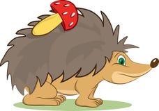 Hedgehog mammal animal. Sweet and small animal hedgehog is walk slowly Stock Image
