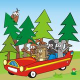 Baby animal and car Stock Images