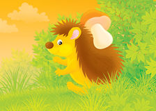 Hedgehog with a mushroom Royalty Free Stock Images