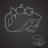 Hedgehog and mushroom drown on chalkboard Stock Images