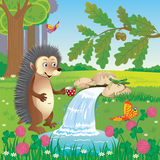 Hedgehog near a spring in a clearing in the woods vector illustration