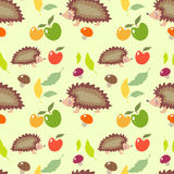 Hedgehog pattern Royalty Free Stock Photo