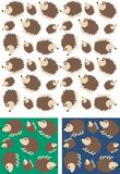 Hedgehog pattern seamless Stock Photo
