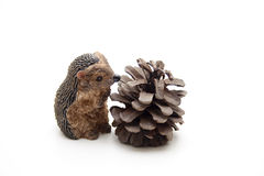 Hedgehog with pine plug Royalty Free Stock Photo